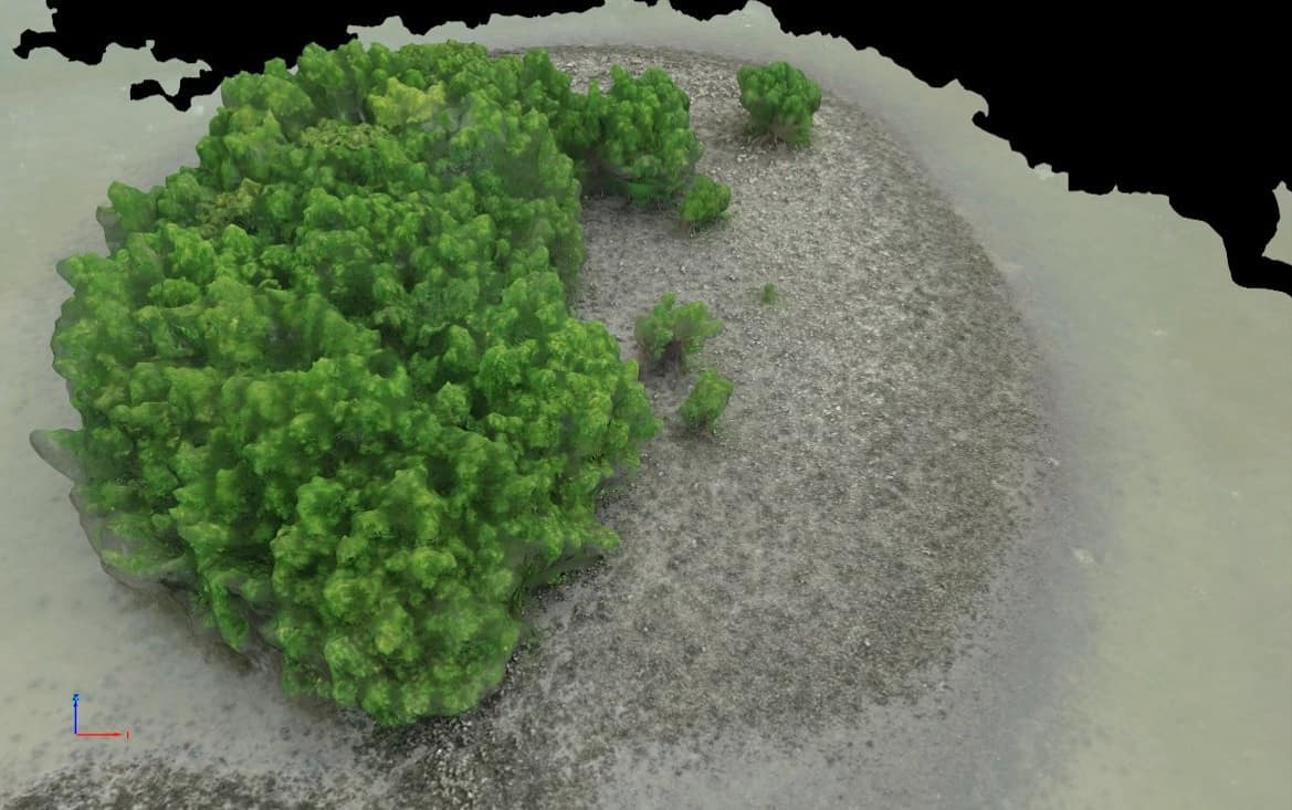 UAS cameras captured visuals that were processed into virtual renderings of oyster reefs near Edgewater, Fla.