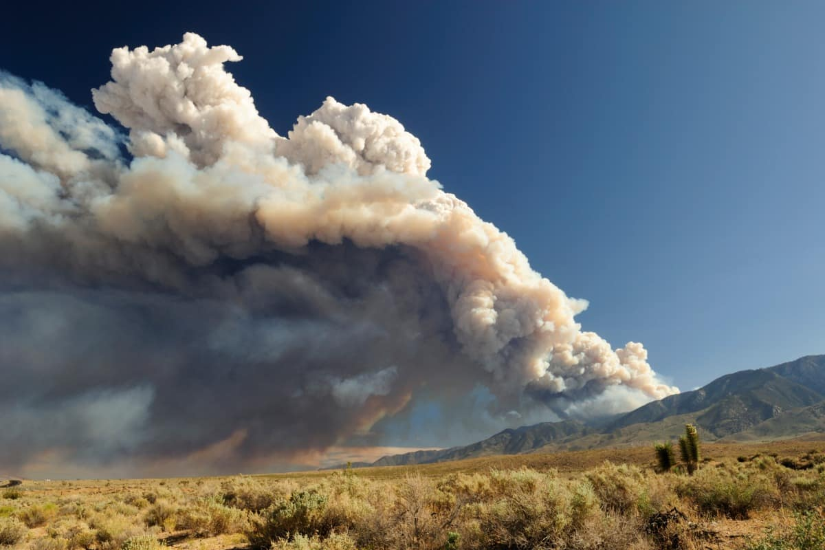 Natural wildfires modify the pressure, temperature, moisture processes, and wind field in the complex terrain surrounding a wildfire, dramatically influencing fire spread and growth throughout the Southwest