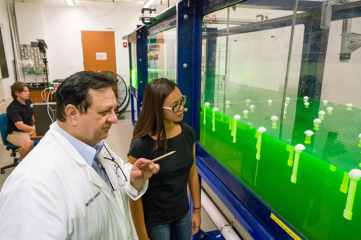 Professor Andrei Ludu works with Embry-Riddle student Moriah Calfin and a nonlinear wave tank.